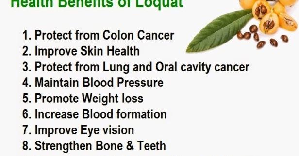 loquat-Eriobotrya-Japonica-Benefits.jpg